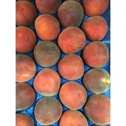 Semi Peach